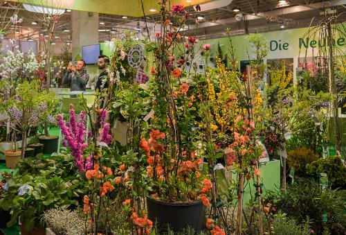 Internationale Pflanzenmesse (IPM ESSEN)